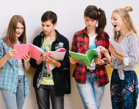 Программа Международного Бакалавриата Middle Year Programme (IB MYP)