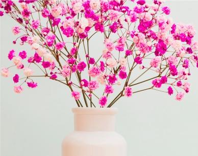 Congratulation on the Navruz